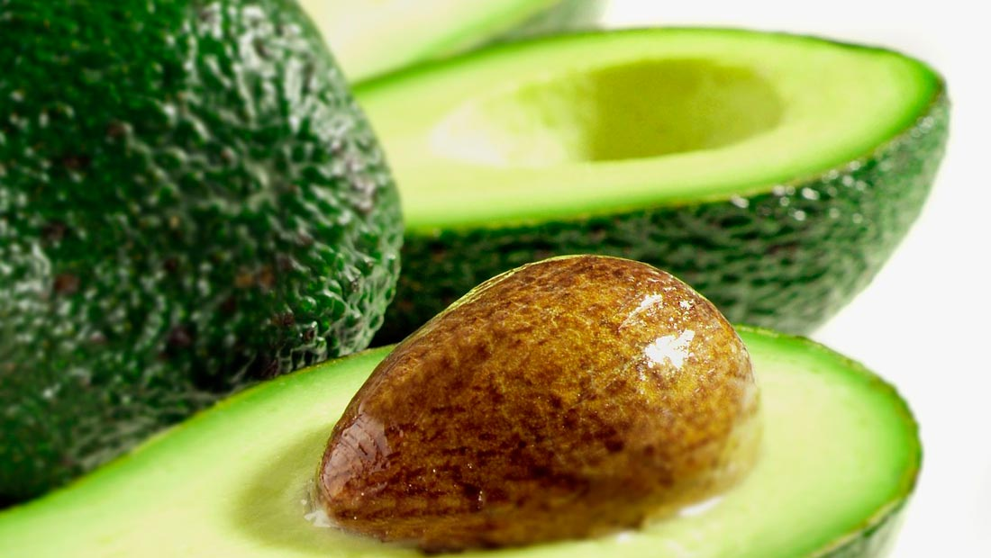 Opzoek naar leveranciers van avocado's?