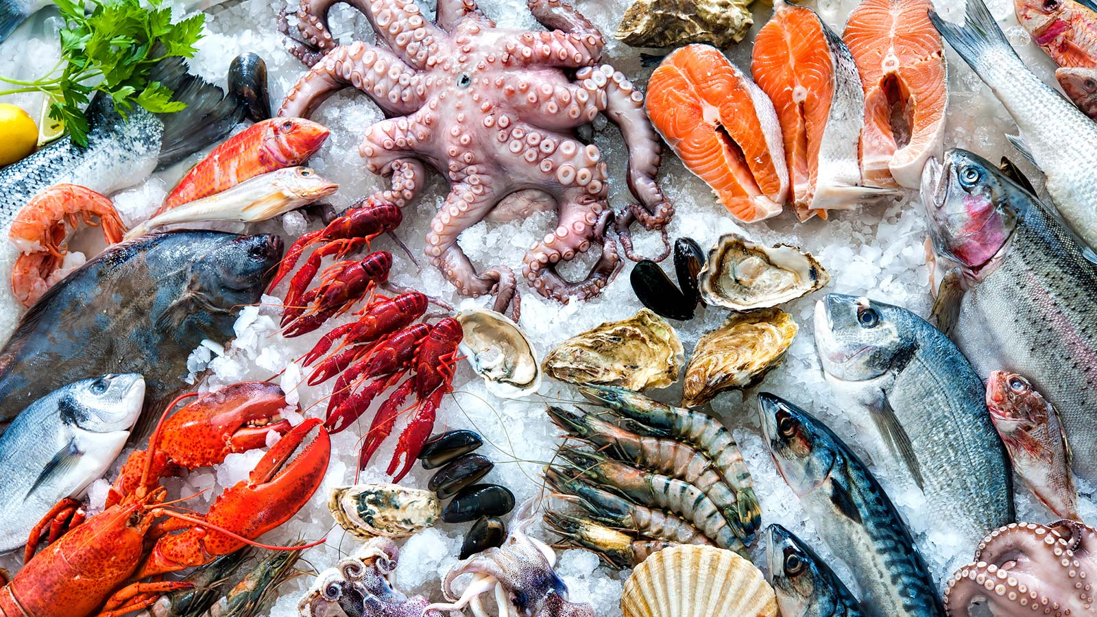 Groeiende vis en zeevruchten markt Mexico