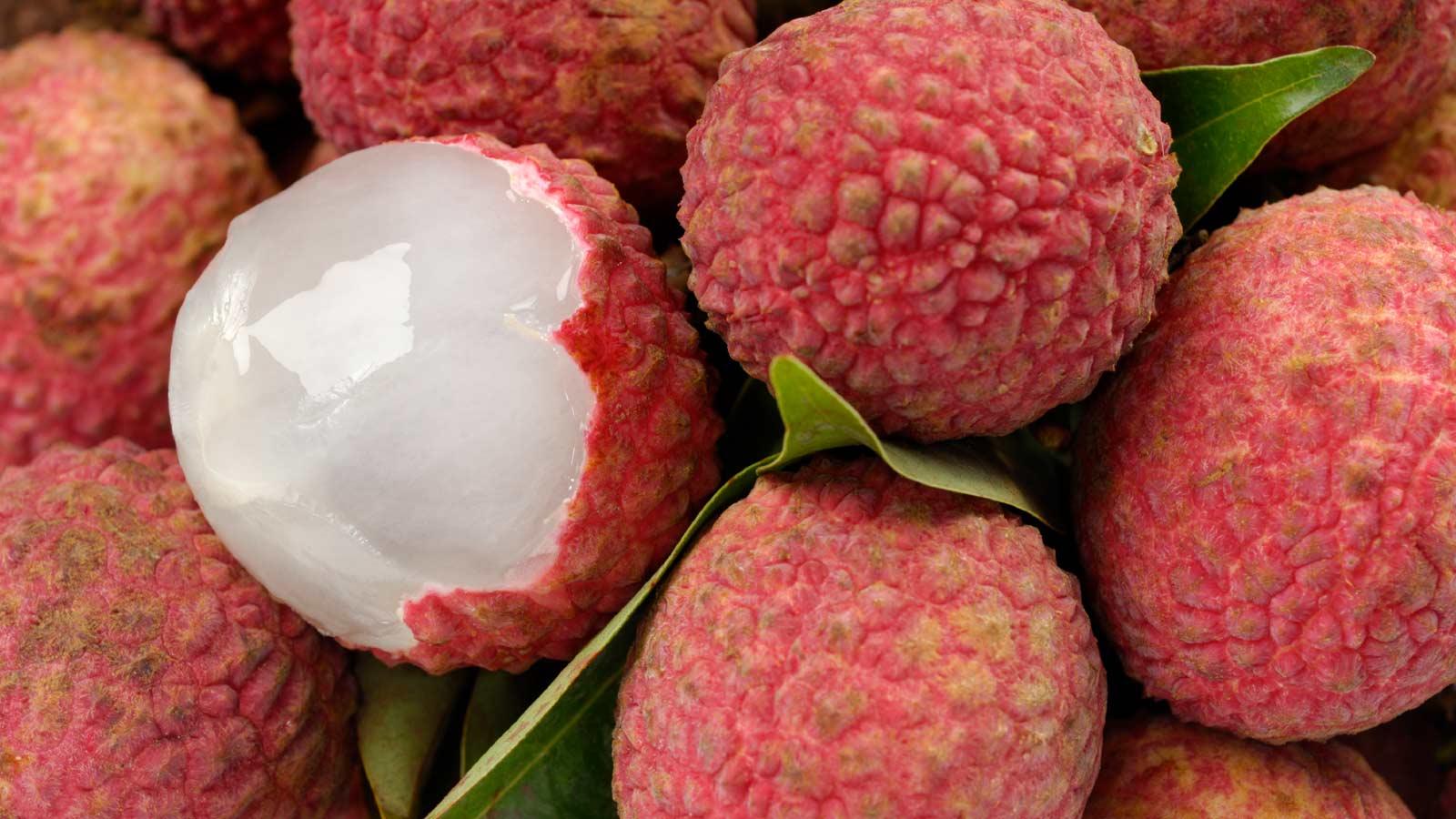 Mexico oogst jaarlijks 28.000 ton lychees